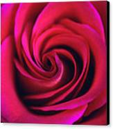 Velvet Rose Canvas Print by Kathy Yates