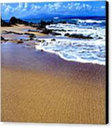 Vieques Beach Canvas Print by Thomas R Fletcher