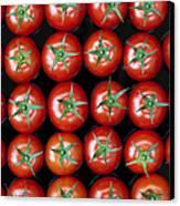 Vine Tomato Pattern Canvas Print