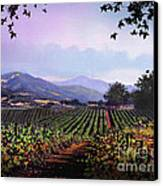 Vineyard Napa Sonoma Canvas Print by Robert Foster