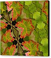 Vineyard Quilt Canvas Print
