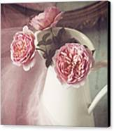 Vintage Pink Canvas Print by Amy Weiss