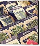 Vintage Seed Packages Canvas Print by Edward Fielding