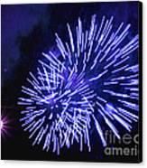 Violet Display Canvas Print by Katherine Forrester