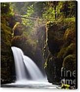Virgin Creek Falls Canvas Print by Chris Heitstuman