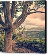 Waihee Ridge Trail Maui Hawaii Canvas Print