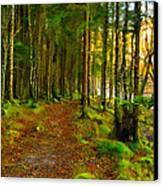 Walking In A Scottish Highland Wood Canvas Print by Mark E Tisdale