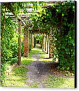 Walkway Canvas Print by Carey Chen