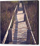 Walkway Through The Reeds Appalachian Trail Canvas Print by Edward Fielding
