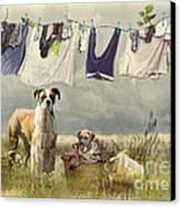 Wash Day Canvas Print by Trudi Simmonds