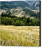 Washake Wilderness Canvas Print