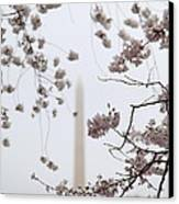 Washington Monument - Cherry Blossoms - Washington Dc - 011339 Canvas Print