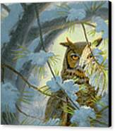 Watchful Eye-owl Canvas Print by Paul Krapf