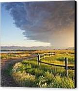 Watching The Storm Canvas Print by Dana Moyer