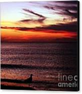 Watching The Sunset Canvas Print by Doris Wood