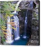 Water Falls Canvas Print