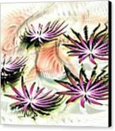 Water Lilies Canvas Print by Anastasiya Malakhova