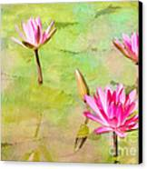 Water Lilies Inspired By Monet Canvas Print