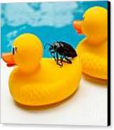 Waterbug Takes Yellow Taxi Canvas Print