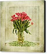 Watercolour Tulips Canvas Print by John Edwards