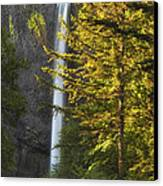 Waterfall In The Light Canvas Print by Andrew Soundarajan