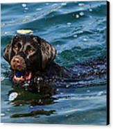 Waterlogged 2 Canvas Print