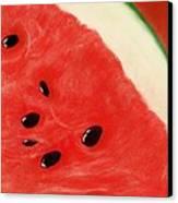 Watermelon Canvas Print by Anastasiya Malakhova
