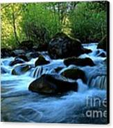 Waters Majestic Canvas Print by Tim Rice