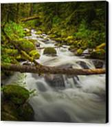 Waters Of Larch Mountain Canvas Print by Stuart Deacon