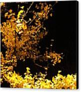 Wave Of Yellow Canvas Print