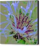 Waving Blue Canvas Print