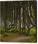 We Follow The Path II Canvas Print by Jon Glaser