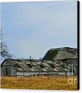 Weathered Barns Canvas Print by Alys Caviness-Gober