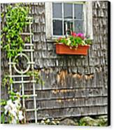 Weathered Maine Seacoast Barn Canvas Print by Thomas Schoeller