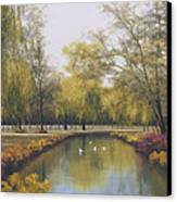 Weeping Willow Canvas Print by Diane Romanello