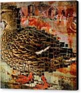 Weird Duck Canvas Print by Cindi Finley Mintie