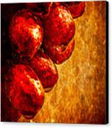 Wet Grapes Three Canvas Print
