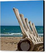 Whale Bones On The Beach Canvas Print by Robert Bascelli