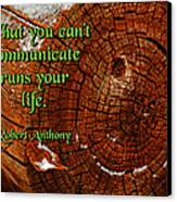 What You Can't Communicate Canvas Print