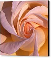 Wheel Rose   Canvas Print by Etti PALITZ