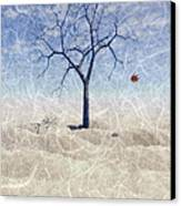 When The Last Leaf Falls... Canvas Print by John Edwards