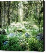 Where Fairies Dwell Canvas Print by Gun Legler