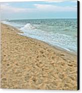 Where Seagulls Walk Canvas Print by Colleen Kammerer