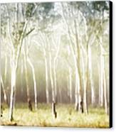 Whisper The Trees Canvas Print by Holly Kempe