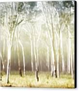 Whisper The Trees Canvas Print