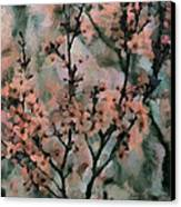 Whispering Cherry Blossoms Canvas Print by Janice MacLellan