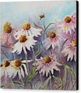 White And Pink Coneflowers Canvas Print by Patsy Sharpe