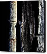 White Hinge On The Old Red Barn Canvas Print by Bob Orsillo