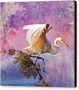 White Lake Swamp Egret Canvas Print by J Larry Walker