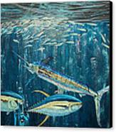 White Marlin Original Oil Painting 24x36in On Canvas Canvas Print by Manuel Lopez